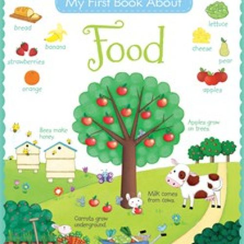 9781409564706-my-first-book-about-food